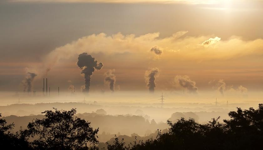 carbon neutral EU