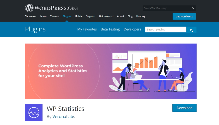 WP Statistics security